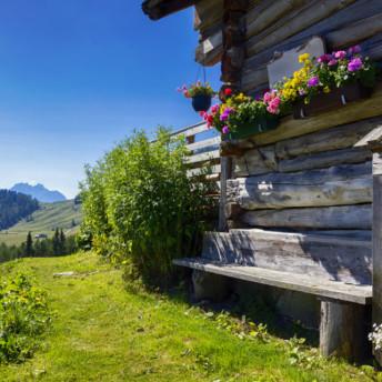Catering Location Almhütte mit Blumen und Bergblick